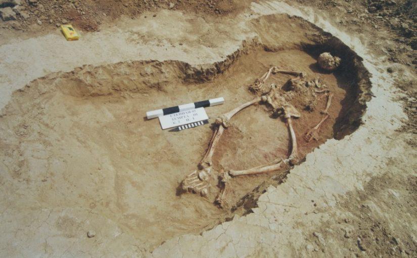 Татуировка бронзового века из Ростовских степей
