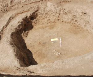 Зачистка ямы в одном из курганов